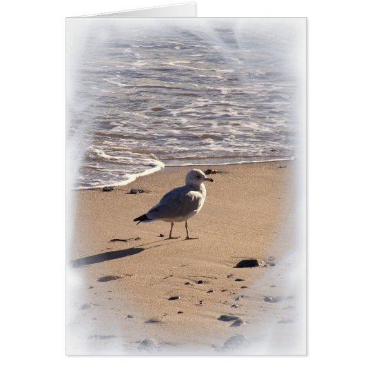 Lkes Long Walks on the Beach... Card