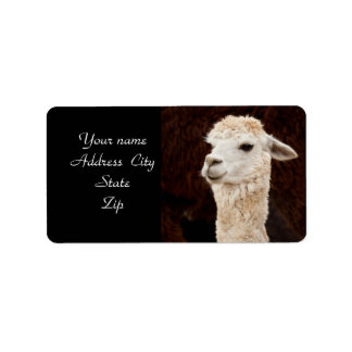 LLama address labels