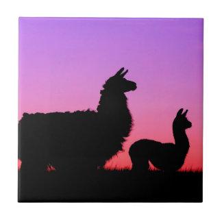 Llama and cria silhouette tile