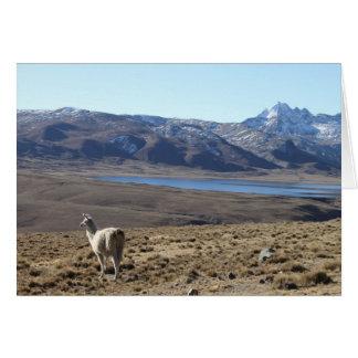Llama at Lagoon by Huayna Potosi Mountain, Bolivia Stationery Note Card