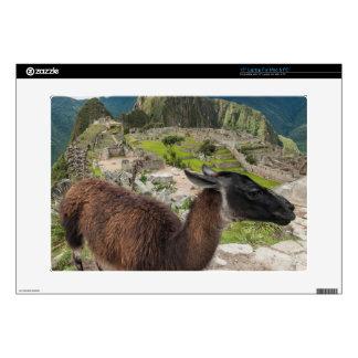 "Llama At Machu Picchu, Aguas Calientes, Peru 15"" Laptop Decal"