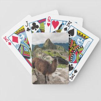 Llama At Machu Picchu, Aguas Calientes, Peru Bicycle Playing Cards