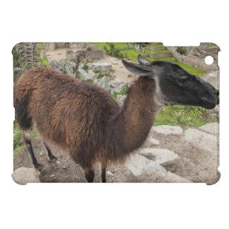 Llama At Machu Picchu, Aguas Calientes, Peru Cover For The iPad Mini