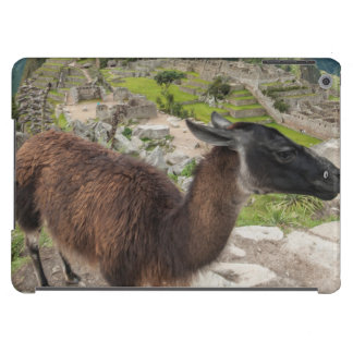 Llama At Machu Picchu, Aguas Calientes, Peru iPad Air Case