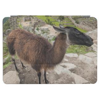 Llama At Machu Picchu, Aguas Calientes, Peru iPad Air Cover