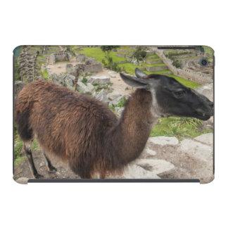 Llama At Machu Picchu, Aguas Calientes, Peru iPad Mini Retina Case