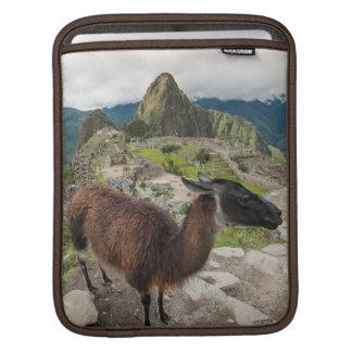 Llama At Machu Picchu, Aguas Calientes, Peru Sleeves For iPads