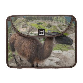 Llama At Machu Picchu, Aguas Calientes, Peru Sleeves For MacBooks