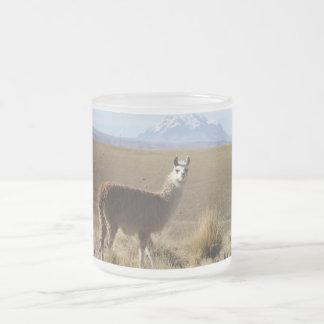 Llama at Snow Mountain - Illimani, Bolivia Frosted Glass Coffee Mug
