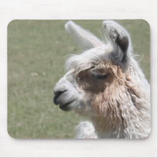 Llama Blush Mouse Pad