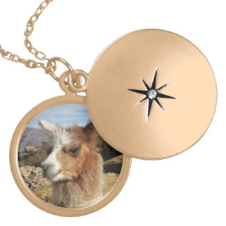 Llama Brown Close up Head Locket Necklace