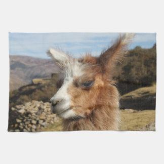 Llama Brown Close up Head Towel