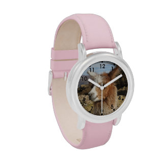Llama Brown Close up Head Wristwatches