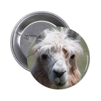 Llama Buttons