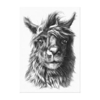 Llama by Svetlana Ledneva-Schukina G068 Stretched Canvas Prints