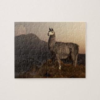 Llama Dawn Puzzle