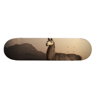 Llama Dawn Skateboard