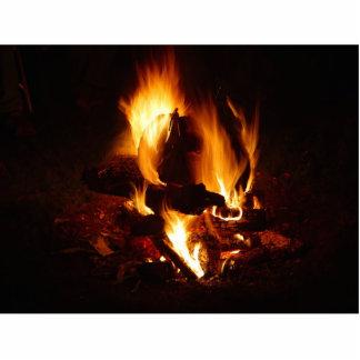 Llama del fuego escultura fotografica