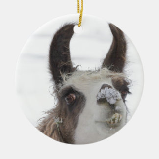 Llama del navidad con nieve en la nariz para los adornos
