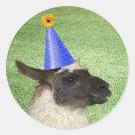 Llama divertida en pegatinas del gorra del fiesta pegatina redonda