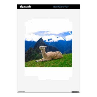 Llama en Machu Picchu Calcomanías Para El iPad 2