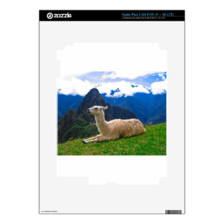 Llama en Machu Picchu iPad 3 Skins