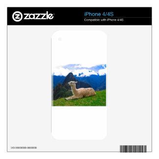 Llama en Machu Picchu iPhone 4S Calcomanías