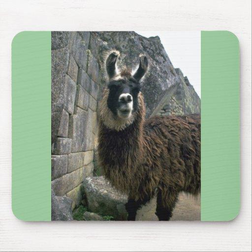 Llama en ruinas peruanas alfombrilla de ratón