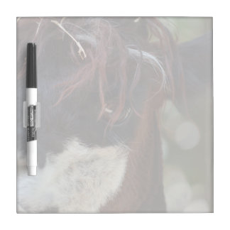 llama eye brown animal farm image Dry-Erase board