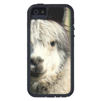 Llama Face Case For iPhone SE/5/5s