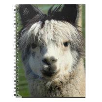 Llama Face Notebook