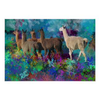 Llama Five Walk in Fantasy Land for Camelids Poster