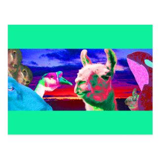 Llama, ganso, orca, cabra, montaje del conejito postal