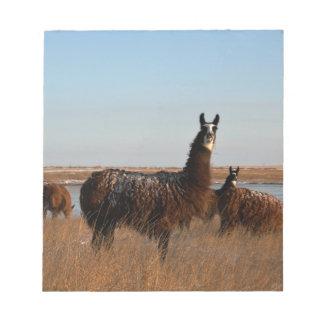 Llama Guardian Notepad