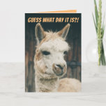 Llama- Guess What Day It Is- Not Hump Day Card