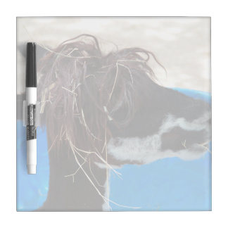 llama hair unkept blue pool farm animal dry erase board