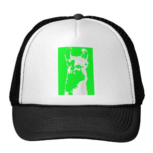 llama head in lime green hat