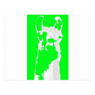 llama head in lime green postcard