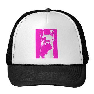 Llama head in pink mesh hat