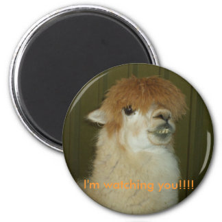 Llama, I'm watching you!!!! 2 Inch Round Magnet