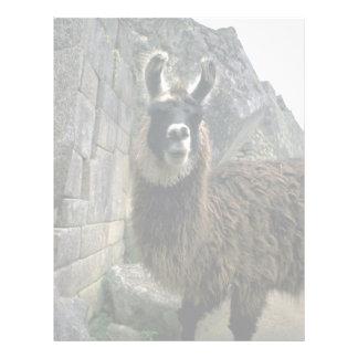 Llama In Peruvian Ruins Custom Letterhead