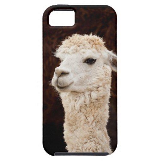 Llama iPhone 5 Case-Mate Coberturas