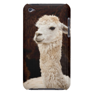 Llama iPod Touch Cover