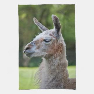 Llama Kitchen Towel