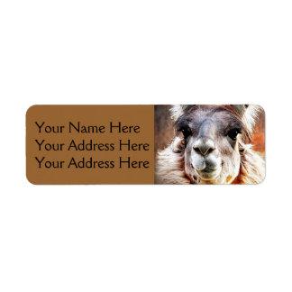 Llama Label