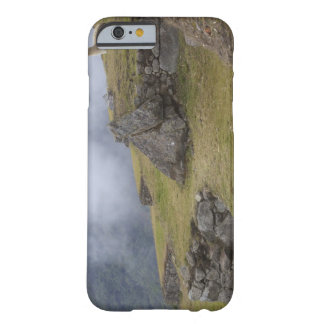 Llama (Lama glama) amongst the Inca terraces at Barely There iPhone 6 Case