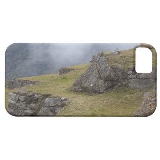 Llama (Lama glama) amongst the Inca terraces at iPhone SE/5/5s Case