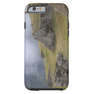 Llama (Lama glama) amongst the Inca terraces at Tough iPhone 6 Case