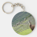 llama lands basic round button keychain