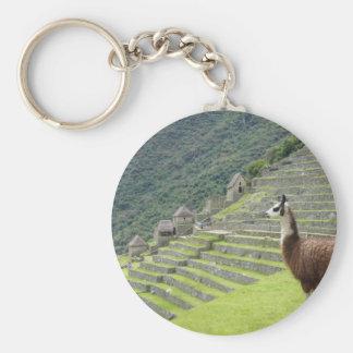 llama lands keychain